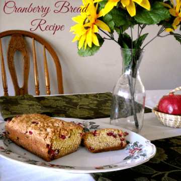 Best Cranberry Recipe ever via flouronmyface.com