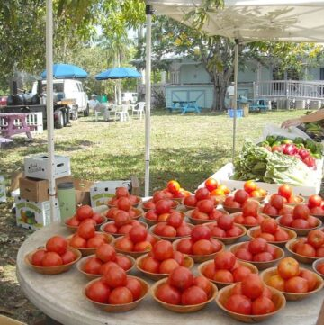 Fresh from Florida - Seen at the Alliance for the Arts Farmers Market in Fort Myers, Florida via flouronmyface.com