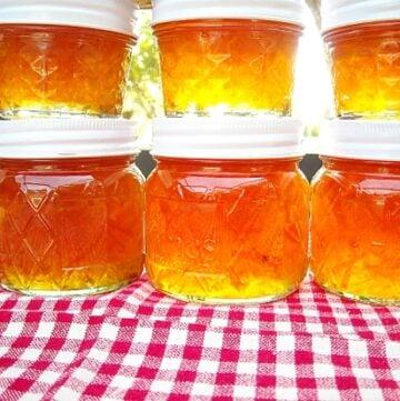 Fresh From Florida, Ciitrus, backyard citrus recipes, Citrus Marmalade,