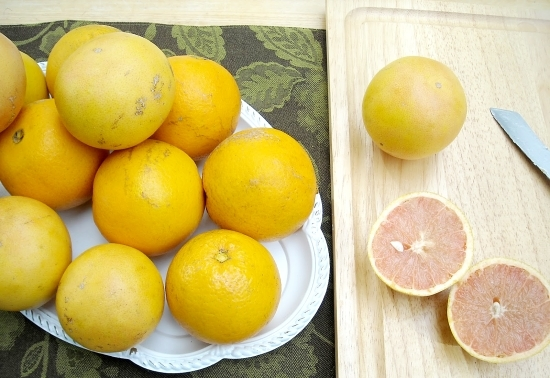 Florida Citrus Recipes, Back Yard Oranges, Marmalade, Canning recipes via flouronmyface.com