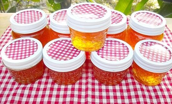 Florida Citrus Marmalade recipe via flouronmyface.com