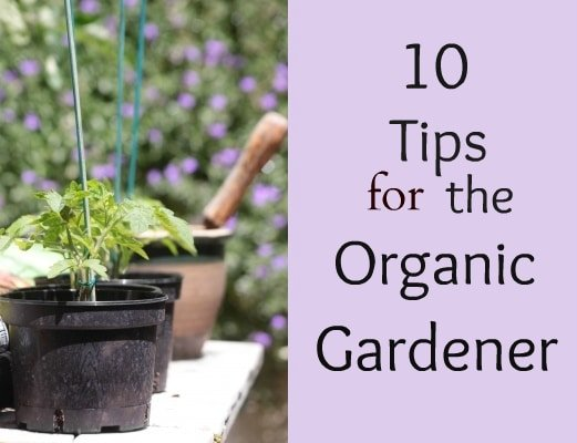 10 Tips for the Organic Gardener via flouronmyface.com