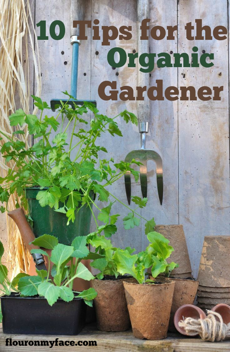 10 Tips for the Organic Gardener via flouronmyface.com