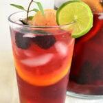 Lipton Green Tea and Honey Sparkling Sangria Mocktail