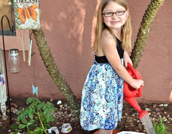 strawberry plants, tea, Bigelow, Earth Day