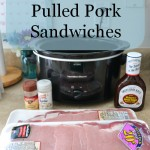 Easy Crock Pot Pulled Pork Sandwich Recipe