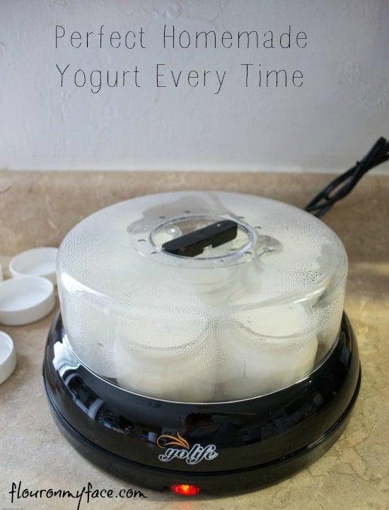 homemade yogurt, how to make homemade yogurt, making yogurt, yogurt recipe