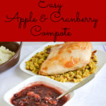 Easy Crock Pot Apple Cranberry Compote