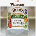 DIY Green Cleaning with Vinegar