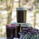 Win a Ball #HeritageBlue Jam & Jelly Maker Prize Pack