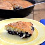 Blueberry Cake recipe from flouronmyface.com