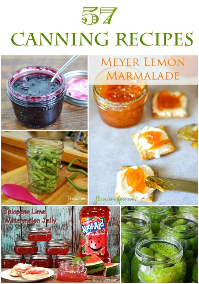57 Canning Recipes via flouronmyface.com