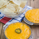 Crock Pot Buffalo Chicken Dip via flouronmyface is a perfect 4th of July dip recipe
