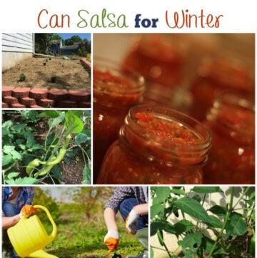How to grow a salsa garden and can salsa for winter via flouronmyface.com