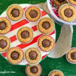 Easy Peanut Butter Blossom Cookies recipe via flouronmyface.com