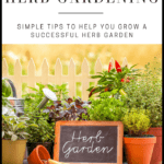 Backyard Herb Gardening FREE eBook