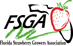 Fresh from Florida Strawberries Logo via flouronmyface.com