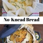 No-Knead Bread Dutch Oven Recipe - only 4 ingredients and the eaiest homemade bread recipe you will ever make via flouronmyface.com
