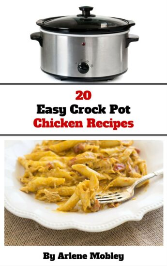 20 Easy Crock Pot Chicken Crock Pot REcipes eBook via flouronmyface.com
