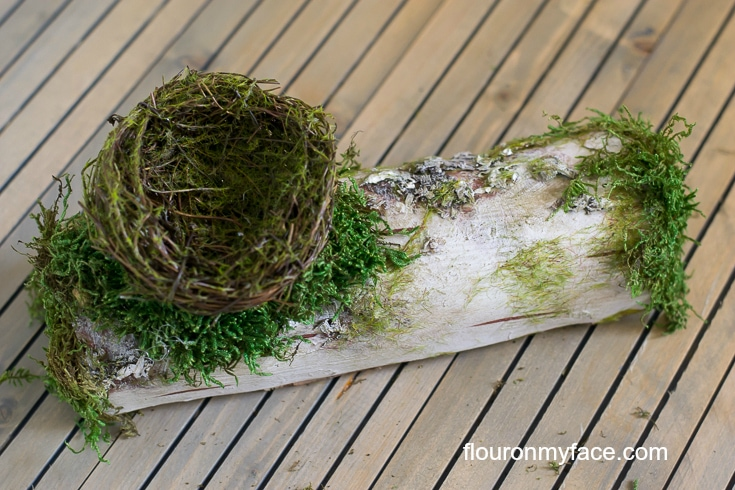 Glue moss around the twig bird nest and on the ends of the birch log via flouronmyface.com