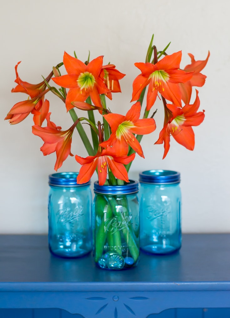 Display beautiful lillies in a blue mason jar via flouronmyface.com