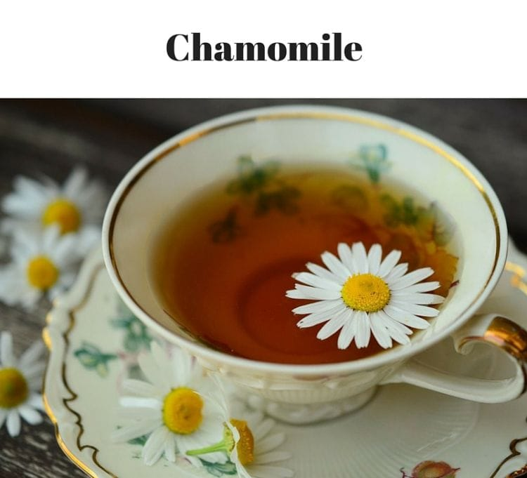 Grow Chamomile in your Kitchen Garden via flouronmyface.com