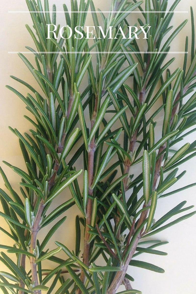 Fresh Rosemary is a must have in any kitchen garden via flouronmyface.com