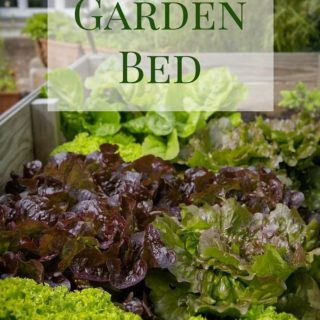 How to create a Raised Garden Bed via flouronmyface.com