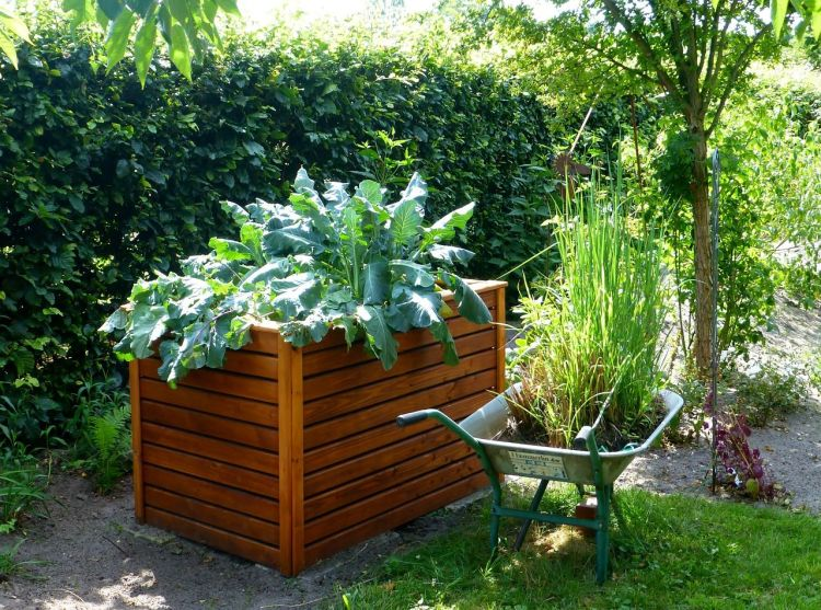 Pick a good location that gets plenty of sunlight for your raised garden bed. via flouronmyface.com
