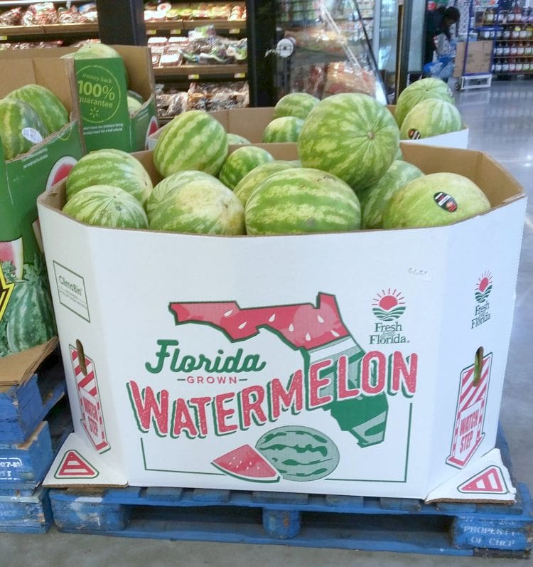 Fresh from Florida Watermelon via flouronmyface.com