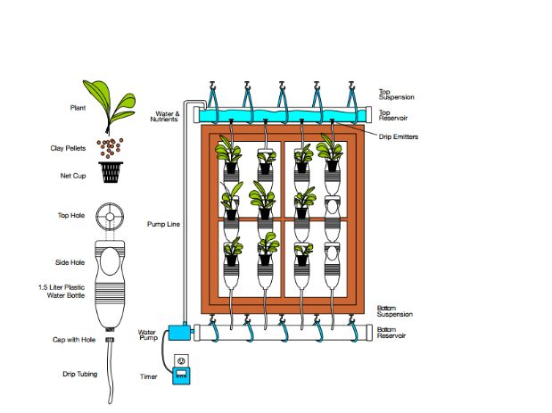 How to create a Hydroponic Window Farm via flouronmyface.com