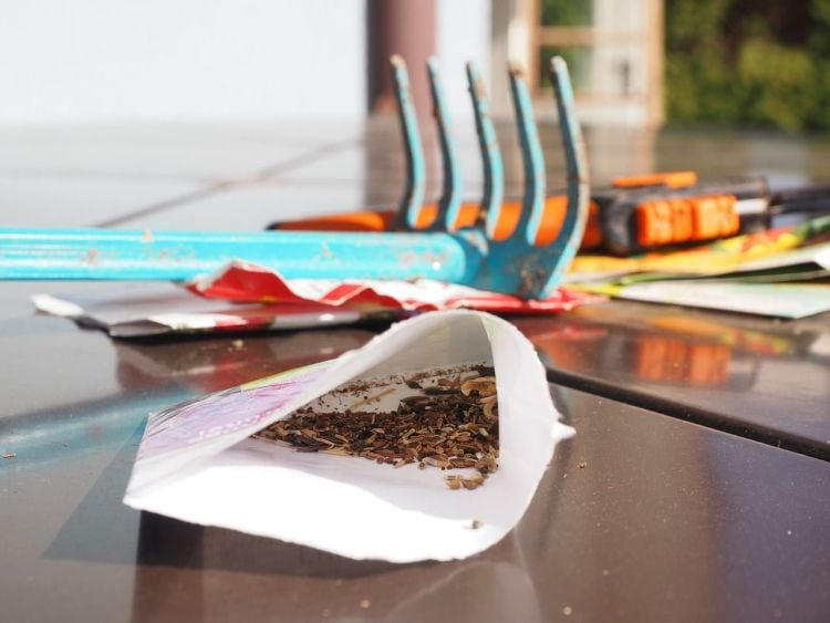 How to Take Care of Garden Tools: Tips for taking care of rakes via flouronmyface.com