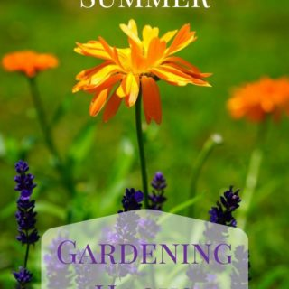 8 Summer Gardening Hack to keep your garden green during the summer month via flouronmyface.com