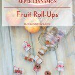 Homemade Apple Cinnamon Fruit Roll-Ups