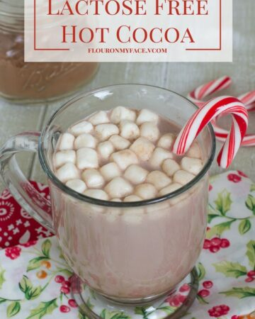 Lactose Free Hot Cocoa and dairy free hot cocoa mix recipe via flouronmyface.com #ad #Lactaid #DairyEnvy