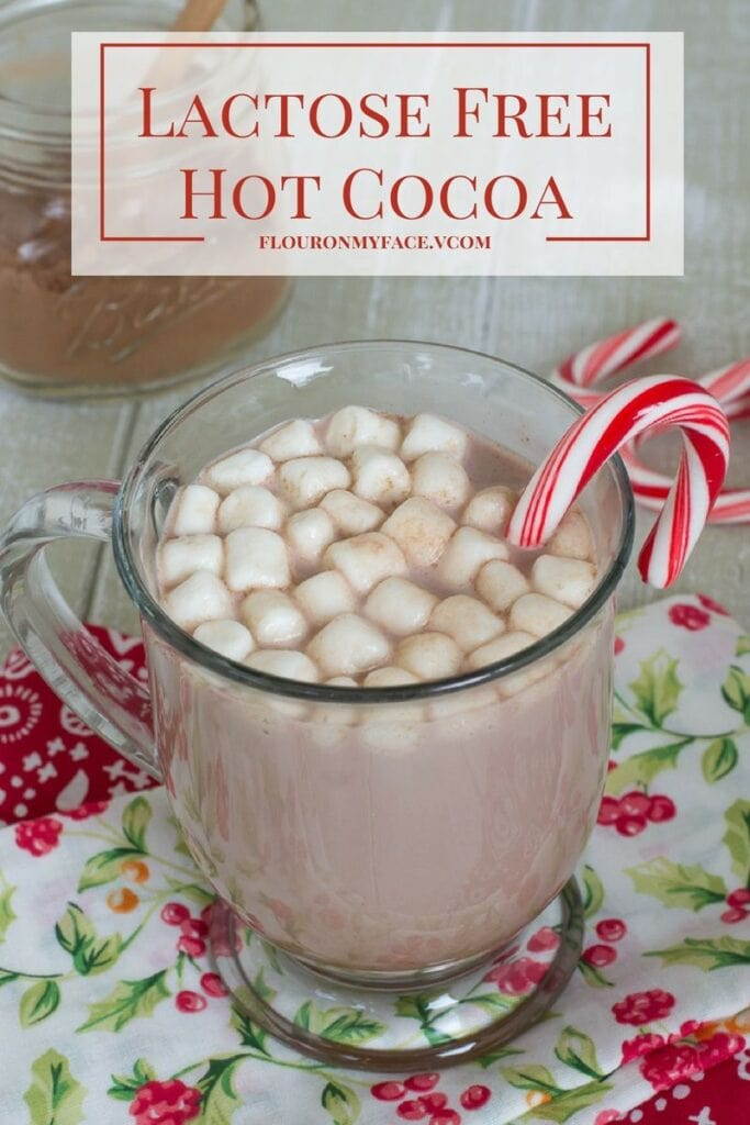 Lactose Free Hot Cocoa and dairy free hot cocoa mix recipe via flouronmyface.com #ad #Lactaid #DairyEnvy