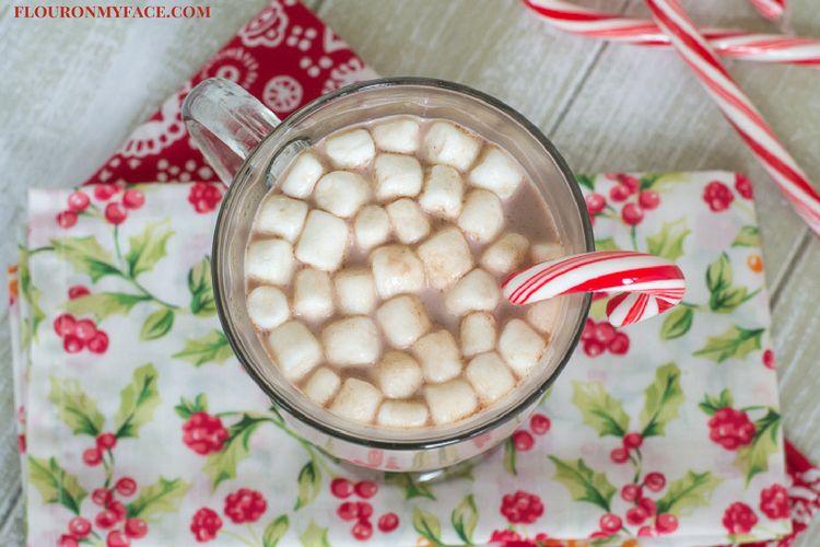 Dairy Free Lactose Free Hot Cocoa recipe via flouronmyface.com #ad #LACTAID #DAIRYENVY