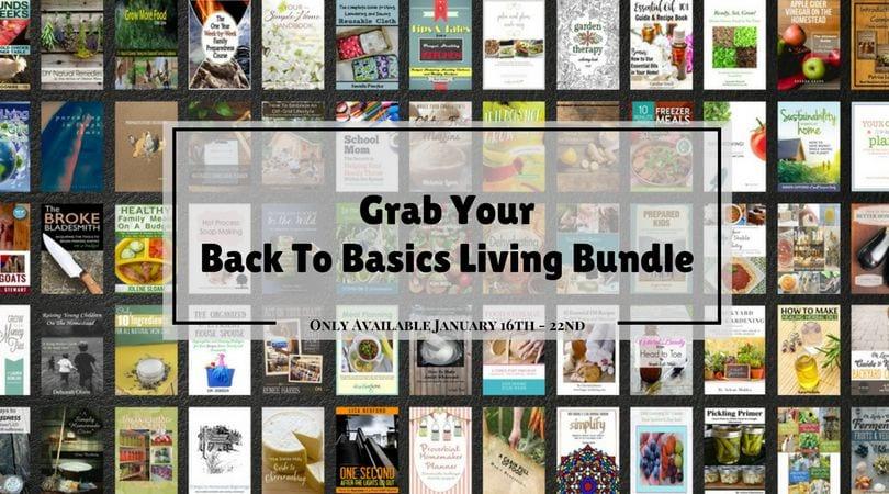 Back To Basic eBook Bundle is on sale for one week-via flouronmyface.com