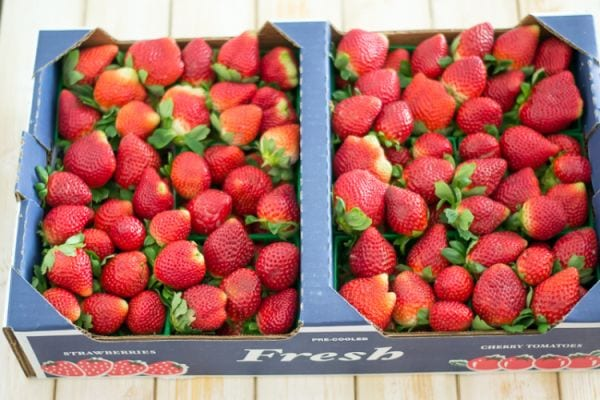 Fresh from Florida strawberries.