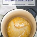 No-Knead Five Minute Artisan Bread