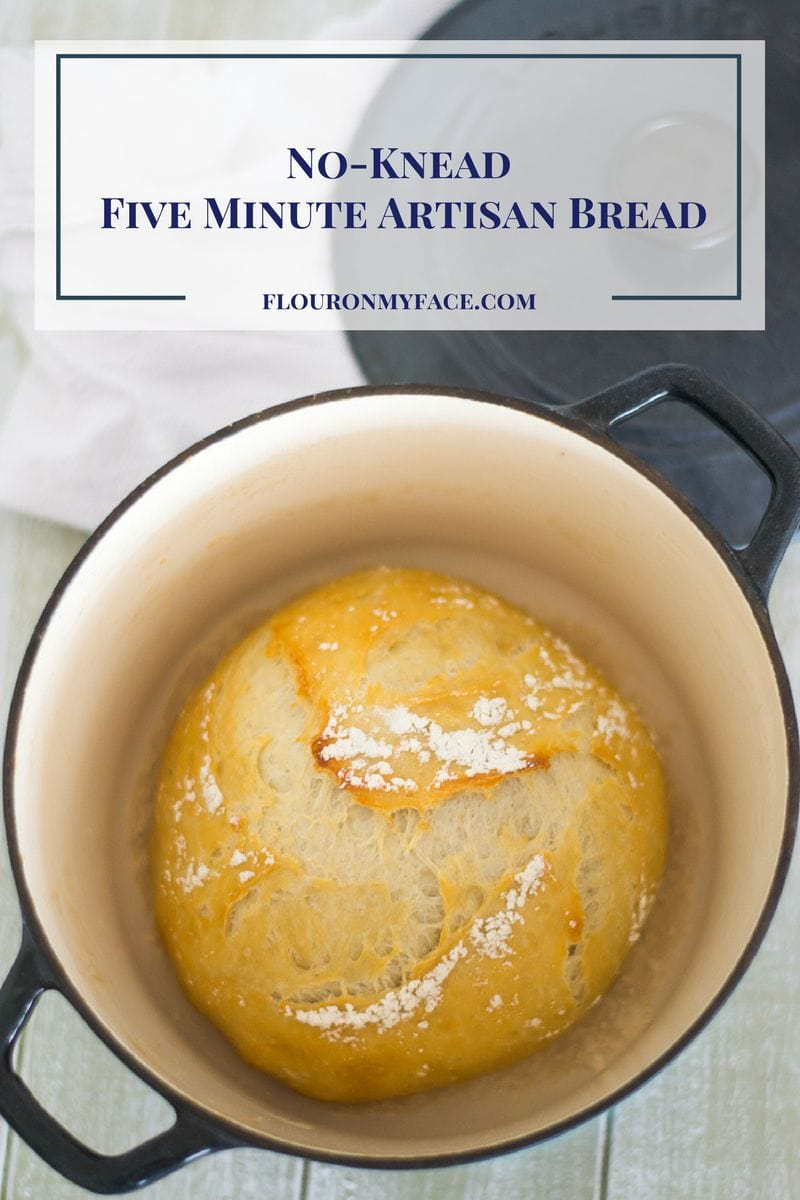 No-Knead Five Minute Artisan Bread at home via flouronmyface.com