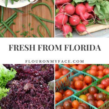 Fresh From Florida Winter Produce via flouronmyface.com #ad #freshfromflorida
