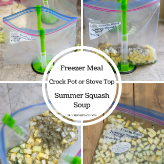 Freezer Meal Crock pot Summer Squash recipe with stove top cooking directions included