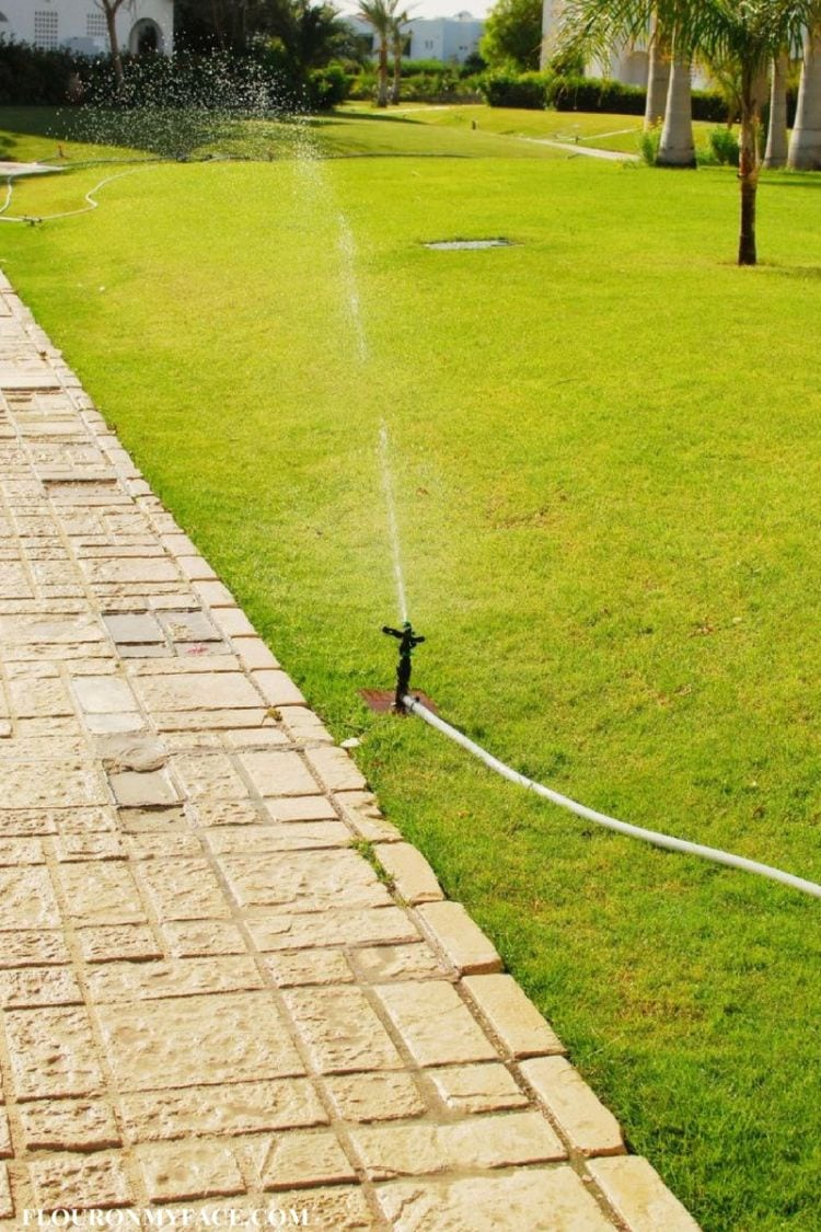 Water your Florida Lawn wisely #ad