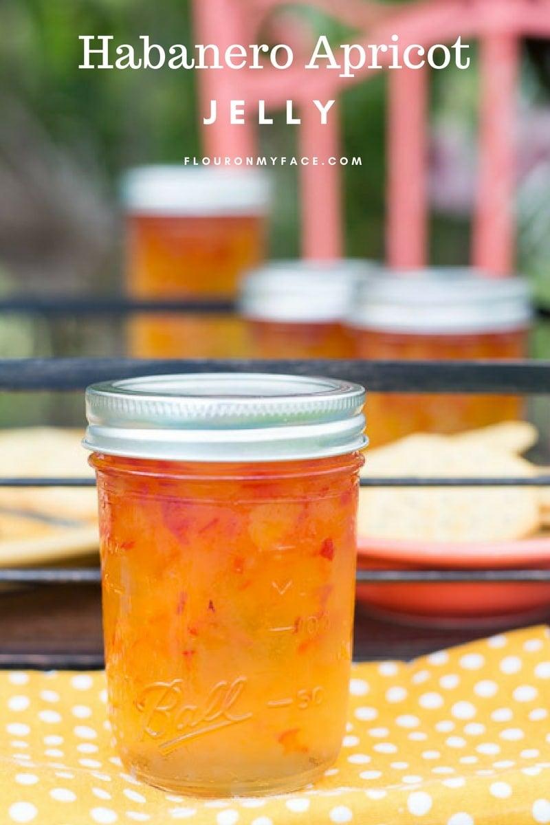 Habanero Apricot Jelly recipe is my new favorite hot pepper jelly recipe. via flouronmyface.com