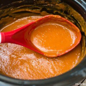 Homemade Crock Pot Butternut Squash Sauce recipe