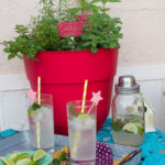 a red planter filled with herbs to grow for a cocktail herb garden on a teal colored cafe table outside with a tray of cocktails