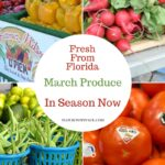 Fresh From Florida March Produce #FollowTheFresh