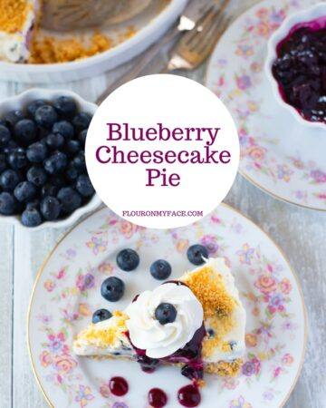 Blueberry Cheesecake Pie recipe made with fresh Florida blueberries