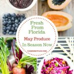 Fresh From Florida May Produce In Season Now